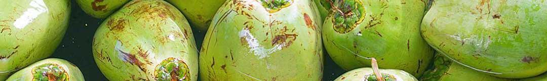 agua-de-coco-legal